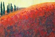Under the Tuscan Sun - Copy